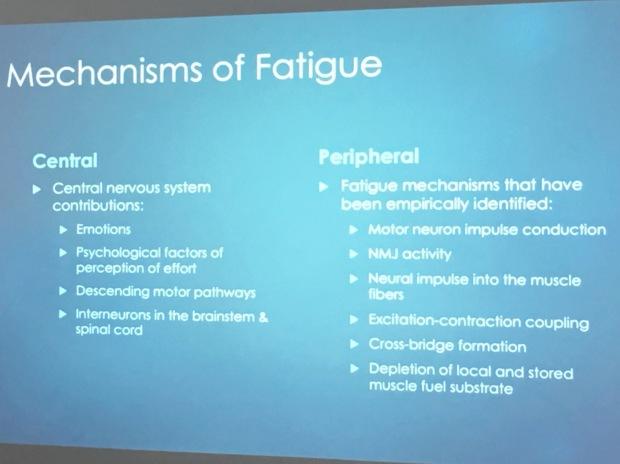 31. Fatigue