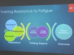 32. Fatigue